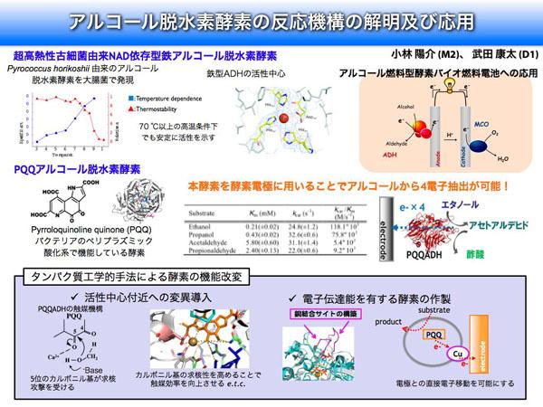 Ohno & Nakamura Laboratory