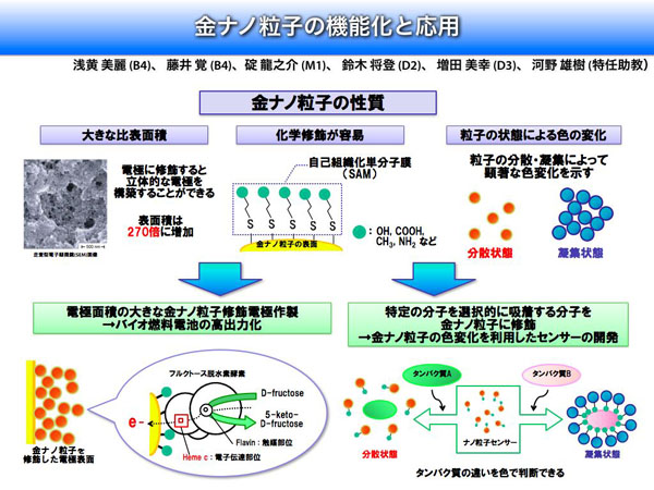 Ohno & Nakamura Laboratory at TUAT